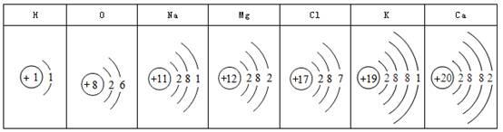 多元素的原子结构示意图