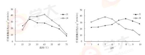研究人员从牛胃中筛选纤维素酶高产菌株