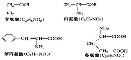 胰岛素分子有a,b两条肽链,a链有21个氨基酸,b链有30个